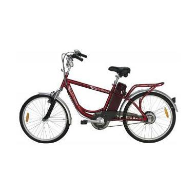 Yukon Trail Navigator SM24 Male Single Speed Eco-Friendly Electric Bike - Red