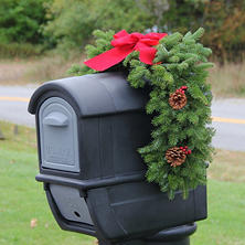 Worcester Wreath Co. Classic Mailbox Holiday Swag