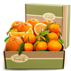 Citrus Fruit Duet Gift Box