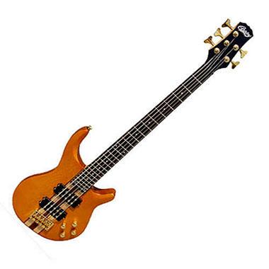 Simba Copley 5-String Electric Bass Guitar