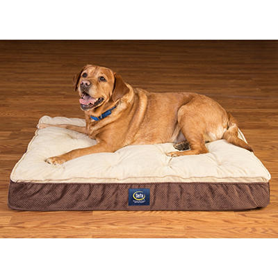 Serta Perfect Sleeper Elite Orthopedic Pillow Top Pet Bed (Choose Your Color)