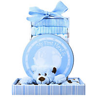 Beary Cuddly Baby Gift Basket - Select Color