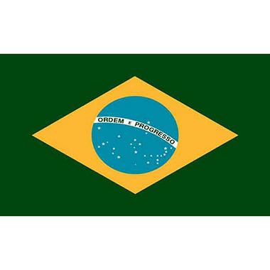 Brazil 3'X5' Nylon Flag
