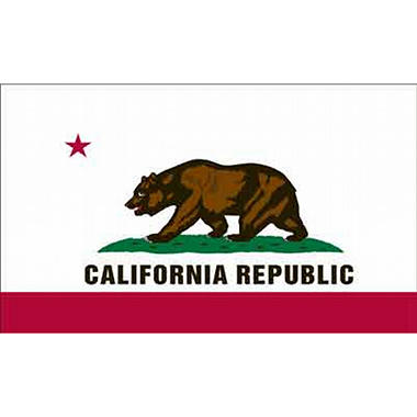 California 3' x 5' Nylon Flag