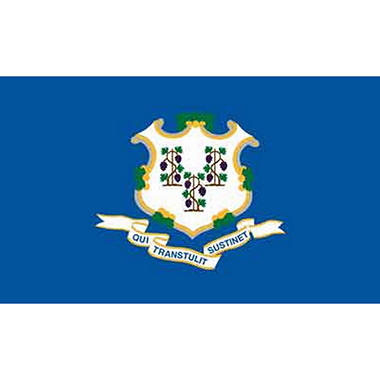 Connecticut 3' x 5' Nylon Flag