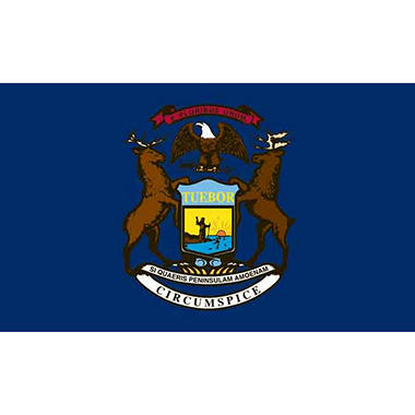 Michigan 3' x 5' Nylon Flag