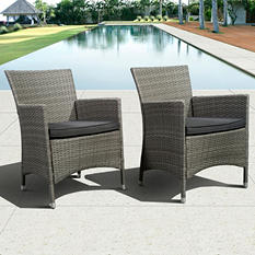 Andana Deluxe Gray Synthetic Wicker Patio Armchair Set with gray Cushions (2 pcs.)