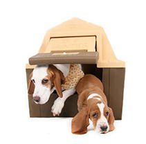 DP Hunter - Insulated Dog House - With Floor Heater for the Winter & Solar Fan for the Summer