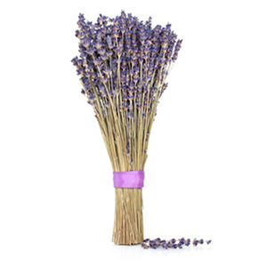 Lavender, Dried (10 bunches)