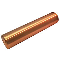 Chlorine-Free Sun Shock Replacement Copper Anode