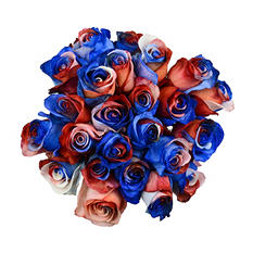 Roses - Tinted Red, White, Blue (50 Stems)
