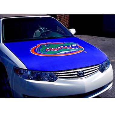 AutoGlove Hood Cover   - Florida
