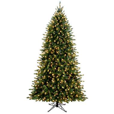 7.5' Aspen Prelit Christmas Tree