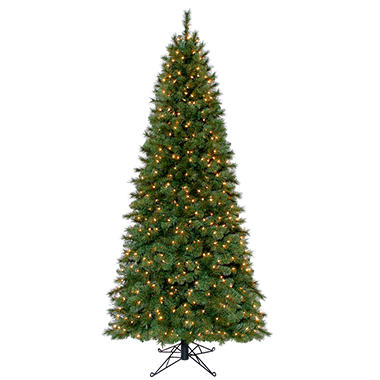 7' Chester Slim Prelit Christmas Tree