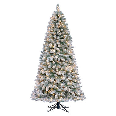 7' Carson Spruce Flocked Pre-lit Quick Set Tree