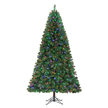 7.5' Shelton Color Changing Pre-lit Quick Set Tree - From Color to Clear Lights in a Snap