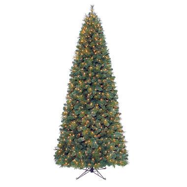 9' Windsor Fir Pre-lit Slim Quick Set® Tree