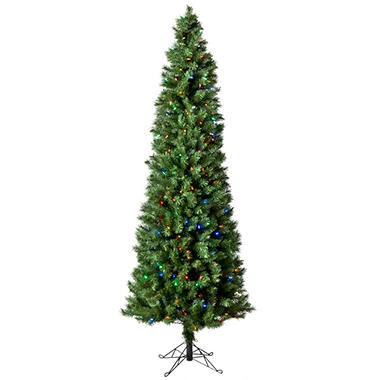 7' Austrian Pine Pre-Lit Pencil Tree with Color Changing Lights