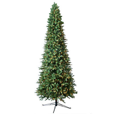Member's Mark 12' Pre-Lit Fraser Fir Slim Christmas Tree