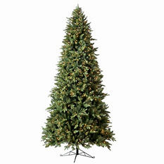 Member's Mark 7.5' Pre-Lit Norway Spruce Christmas Tree