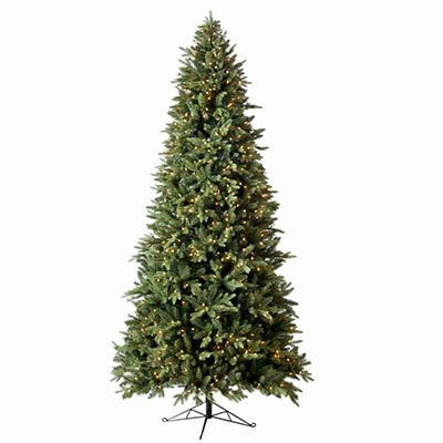 Member's Mark 7.5' Pre-Lit Norway Spruce Christmas Tree