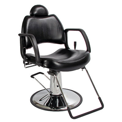 All-Purpose Salon Chair