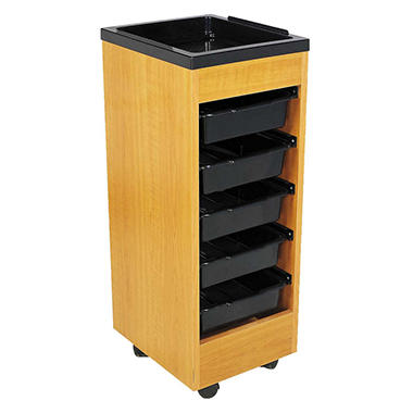 Salon Rolling Storage Cart