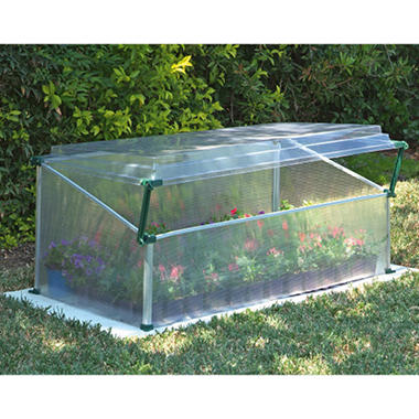 Cold Frame Single-Miniature Greenhouse