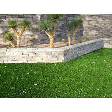 ProViri Plus Custom Sized Artificial Grass Lawn (15' x 1')