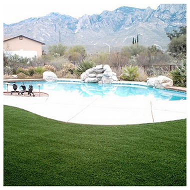ProViri Synthetic Lawn - 5' x 12' or 60 Sq Ft