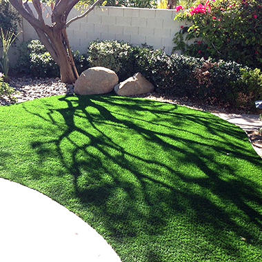 Custom Sized ProViri Synthetic Lawn 15' x 1'