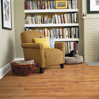 Traditional Living�  Premium Laminate ? Rusticwood Oak; 10mm thick ? 1 pk.
