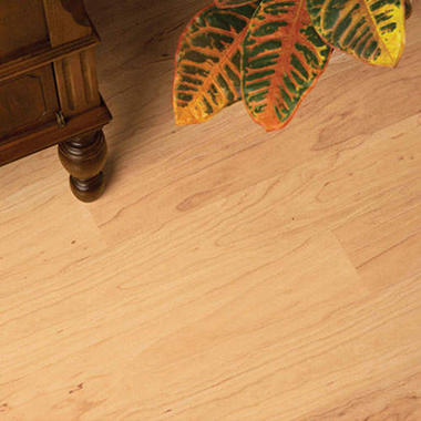 Traditional Living� Premium Laminate Flooring - Monterey Maple; 8MM + 2MM Underlayment Thick - 36PK