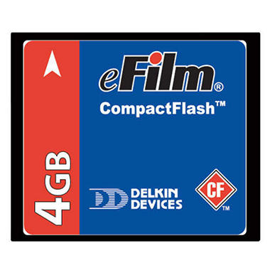 Delkin CompactFlash Memory Card - 4GB