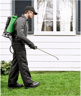 Terminix Pest and Termite Control