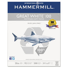 Hammermill Great White 100% Recycled Copy Paper, 20lb, Letter, White, 5000 Sheets