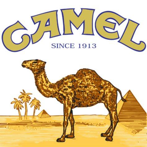 Camel Platinum King Box 1 Carton