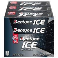 Dentyne Ice Arctic Chill Sugar Free Gum (12 pk.)