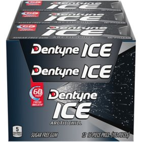 Dentyne Ice Arctic Chill Sugar Free Gum (12 pk.)