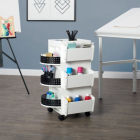 Swivel Organizer