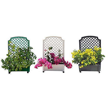 Calypso Self-Watering Planter with Trellis and Wheels (Various Colors)