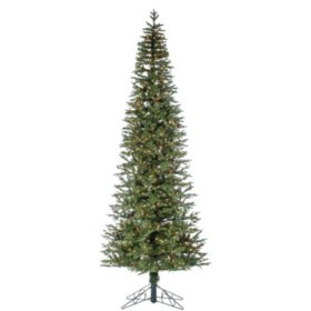 12' Narrow Jackson Pine Christmas Tree