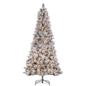9' Flocked Boise Pine Christmas Tree