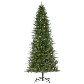 12' Natural Cut Manitoba Pine Christmas Tree