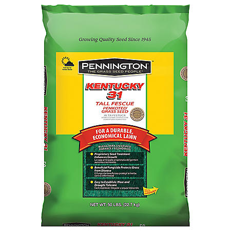 Pennington® Kentucky 31 Tall Fescue Grass Seed - 50 lbs