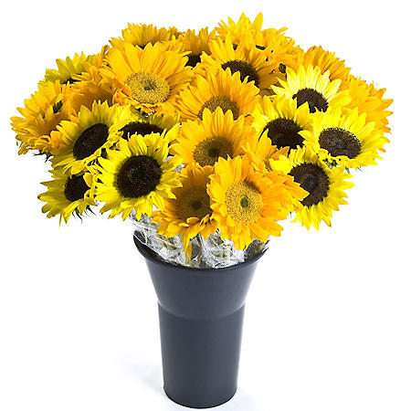Sunflowers, Assorted 10 stems (variety and colors may vary)