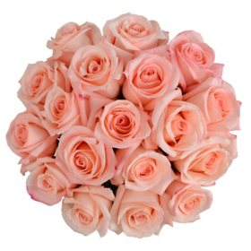 Premium Roses (variety and colors may vary)