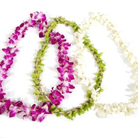 Orchid Leis, Assorted Colors (choose 8 or 15 Leis)