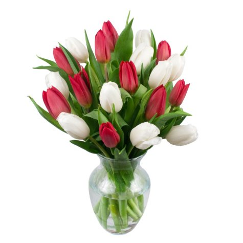 Red & White Tulip Bouquet