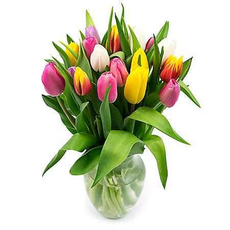 Tulip Bouquet, Rainbow Colors